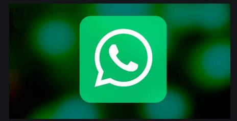Whatsapp Informes de Productos